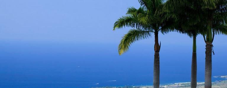 【ハワイ旅行準備】2019年2月ハワイ旅行(特典航空券/ホテル予約等 準備編)