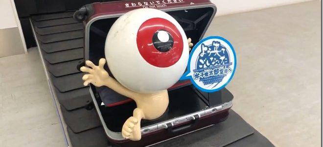 【国内旅行】鳥取・島根旅行!(1日目 カニ食べ放題!)